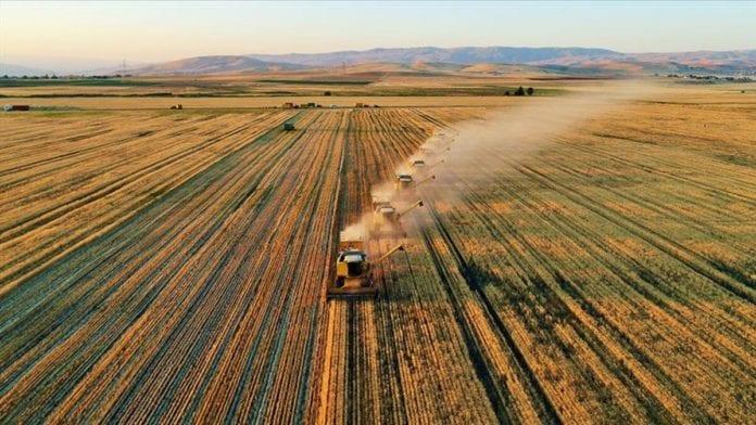 Devlet 7 İlde Çiftçiye Hazineden Ücretsiz Tarım Arazisi Vereceğini Açıkladı!