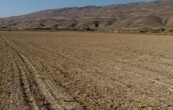 Tarıma Dayalı OSB Kurma Yarışı Başladı!